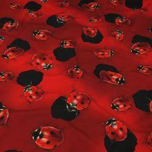 Úplet červený, berušky, š.160