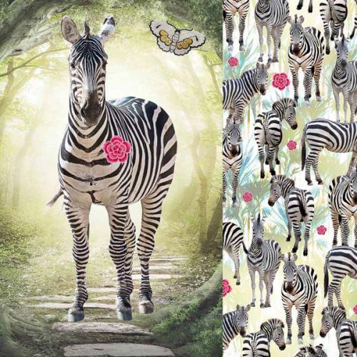 Teplákovina zebra, š.150