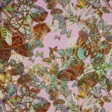 Satén ružový, motýle, š.145