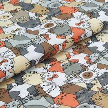 Bavlněné plátno, oranožovo-šedé kočky, š.140