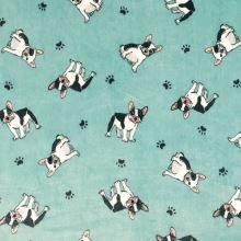 Flanel fleece mint, buldočky, š.150