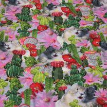 Úplet farebný, škrečok a kvitnúce kaktusy, š.165