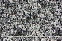 Úplet zebry, š.160
